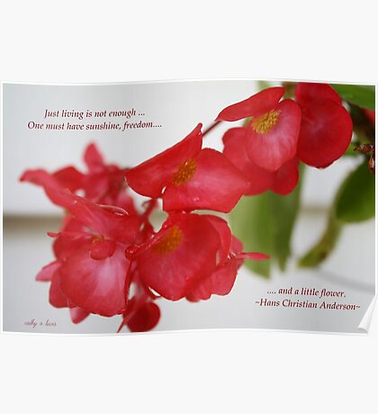 Begonia with quote Poster