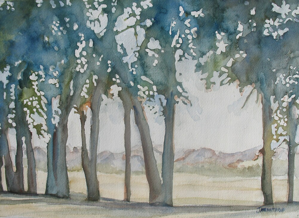 Through the Wind Break by JennyArmitage