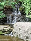 Waterfalls at the Park by Barberelli