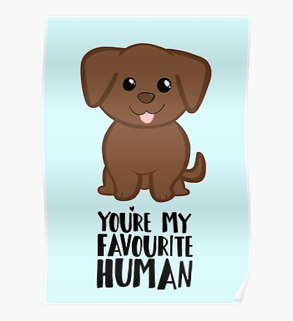 You're my Favourite HUMAN - Chocolate Labrador - Gifts from dog Poster
