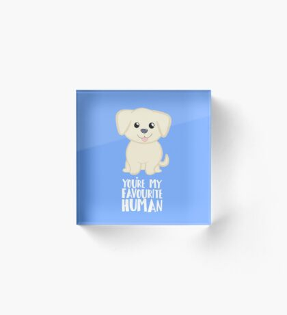 You're my favourite human - Golden Labrador - Gifts from dog Acrylic Block
