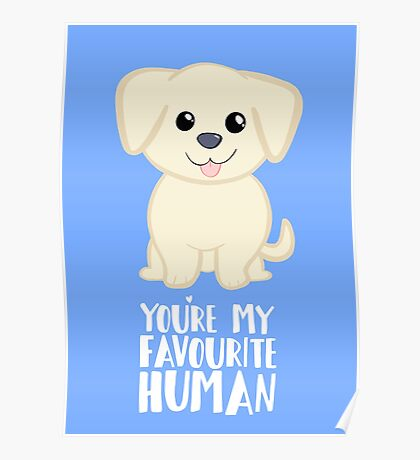 You're my favourite human - Golden Labrador - Gifts from dog Poster