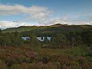 Glen Affric by WatscapePhoto