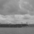 Deutzer Rhein Panorama by Dirk Pagel