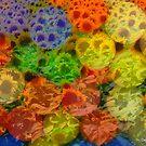 I Wonder What Sunflower Gumballs Taste Like? by Debbie Robbins