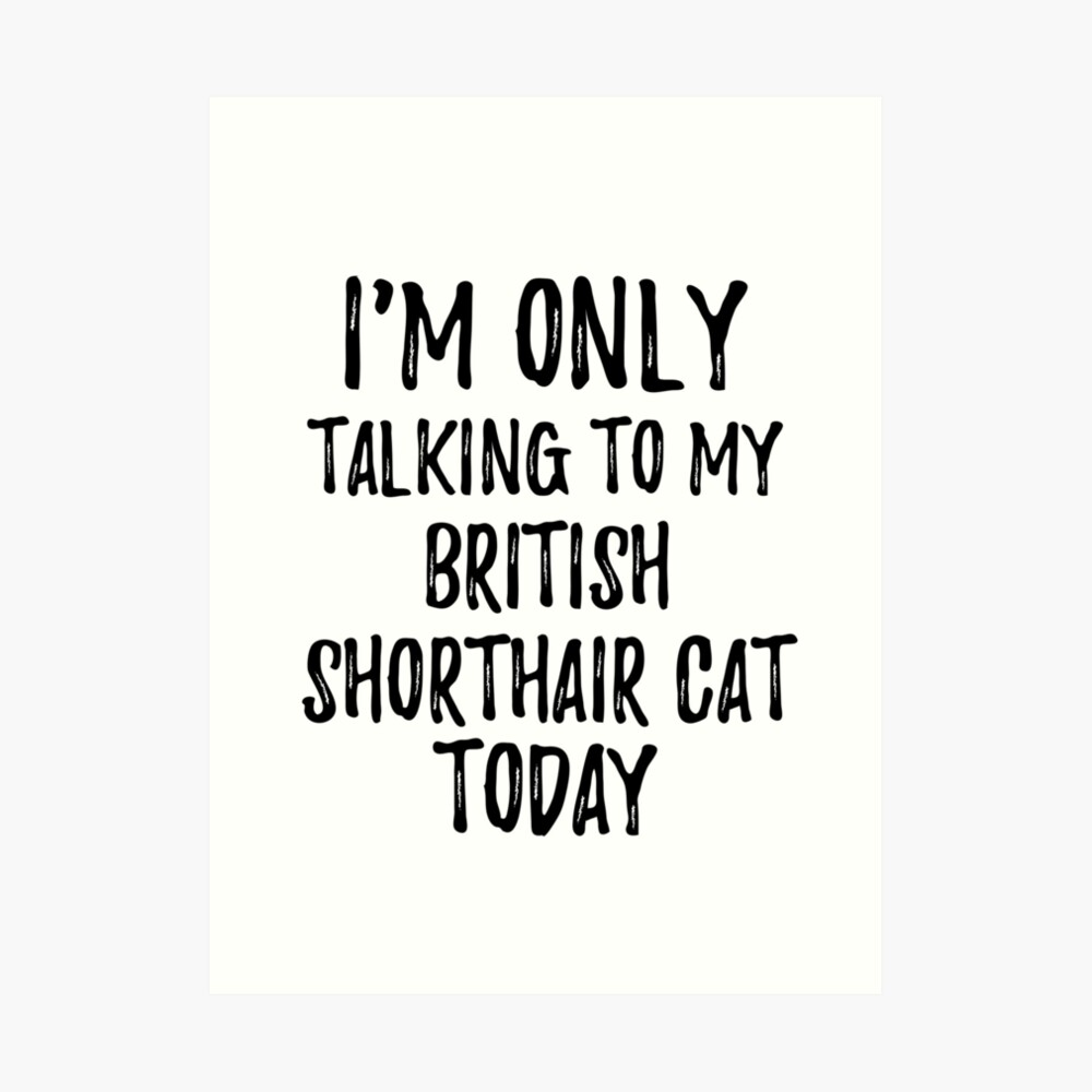 I Am Only Talking To My British Shorthair Cat Today Lámina artística