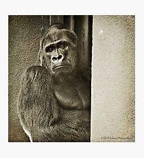 Oscar Jonesy - A Portrait Photographic Print