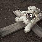Teddy Bear on Cross #2 by farmboy