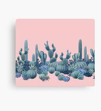 Ruhe-Kakteen auf Rose Quartz Background Leinwanddruck