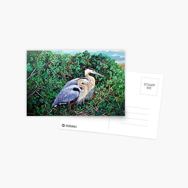 Morning Refuge-Great Blue Heron Postcard