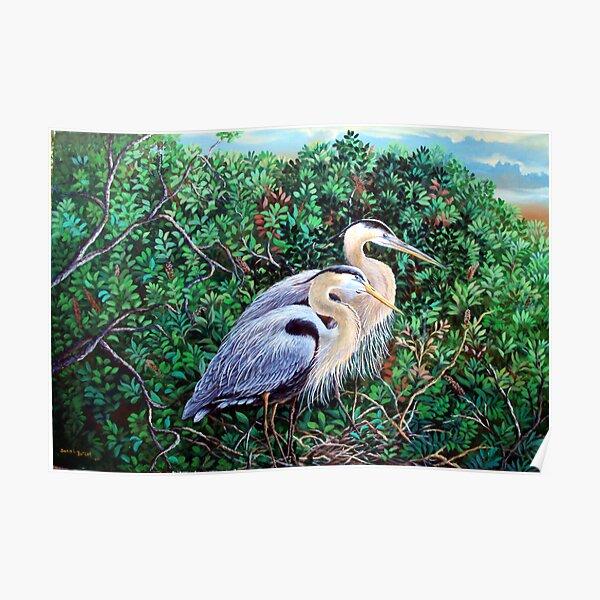Morning Refuge-Great Blue Heron Poster