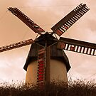 Stone-ground Wind Mill by Ferdinand Lucino