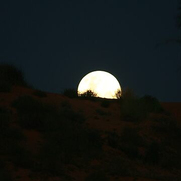 Full Moon Over Dune... by A1000WORDS