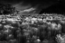 The Meeting of Mare's Tails BW by Andy Freer
