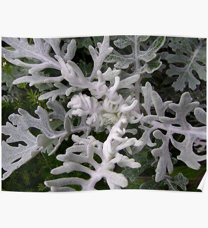 Gargoyles (strange figures among plant leaves) Poster