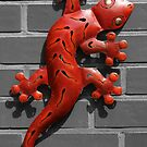 Gecko on the wall by Dirk Pagel