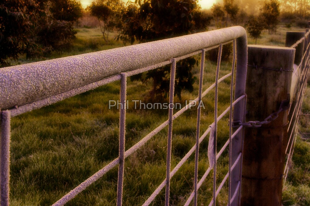 """""""The Icing On The Gate"""" by Phil Thomson IPA"""