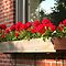 **WINDOW BOX** for **GORGEOUS FLOWER CARDS** Challenge