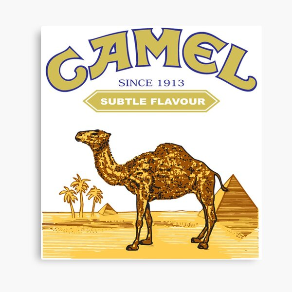 Camel Cigarettes Canvas Print