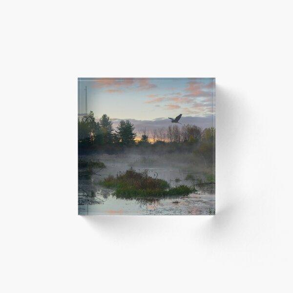 Swamp Tower 5885, Janene Bouck, 2015 Acrylic Block