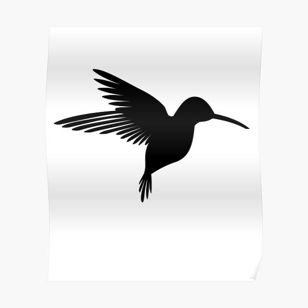 Póster Diseño De Verano Colibrí Bird Colibrí De Artyomyakovenko Redbubble