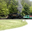 Cass Scenic Railroad by Fred Moskey