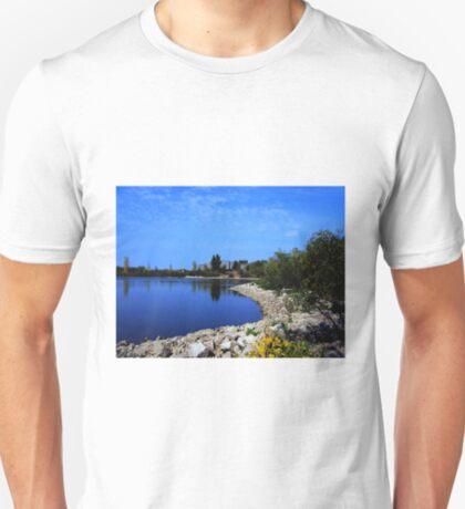 Lake Devonian T-Shirt