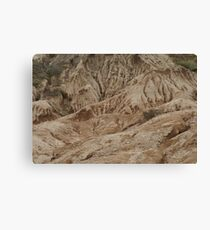 Cabrillo National Park, California Canvas Print