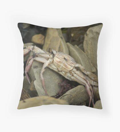 Cabrillo National Park, California Throw Pillow