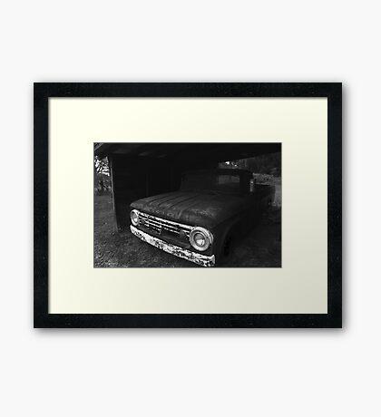 Forgotten Friend BW Framed Print