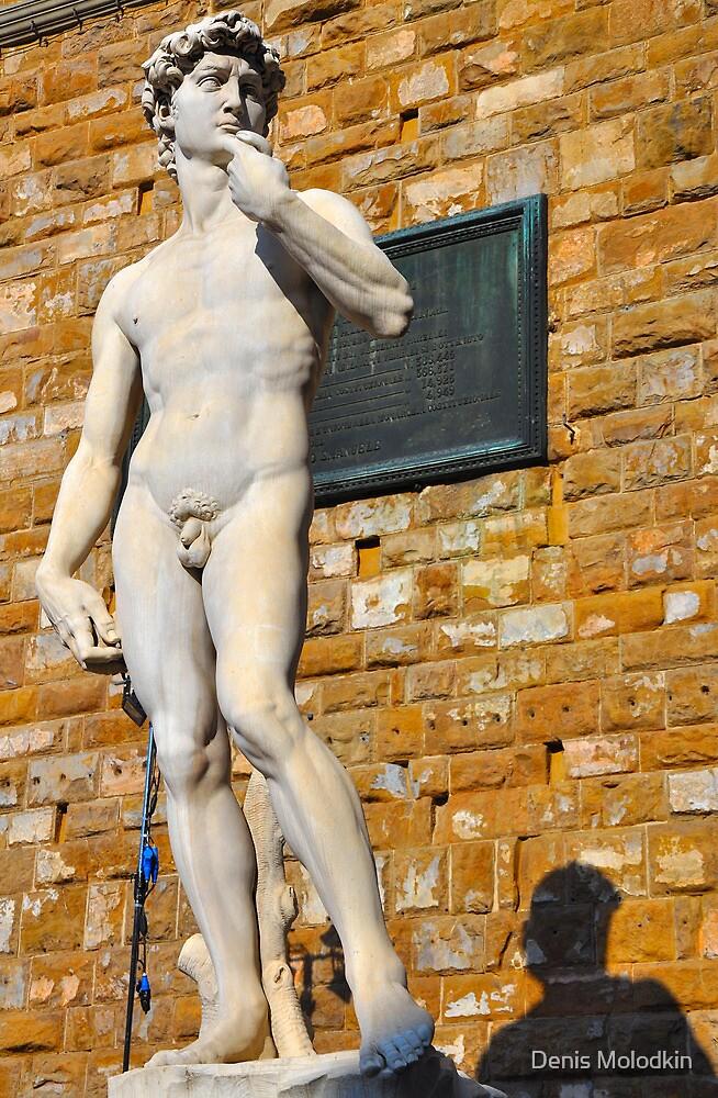 Michelangelo's DAVID by Denis Molodkin