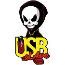 USB sLAve by USBsLAve