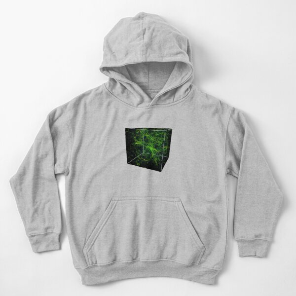 #Astronomy, #Cosmology, #AstroPhysics, #Universe, Exploring the Nature of the Inter- and Circum-galactic Media Kids Pullover Hoodie