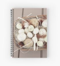 Eggs and feathers Spiral Notebook