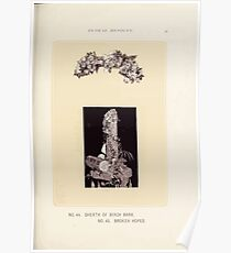 Floral Designs Series I a hand book for cut flower workers and florists John Horace McFarland 1888 0101 Sheeth of Birch Bark Broken Hopes Poster