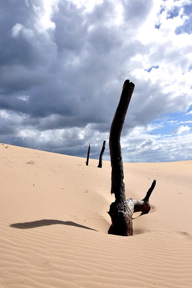 Sandblow - Rainbow Beach by Ken Jones