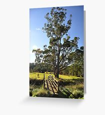 Arboretum Bridge - Launceston Greeting Card