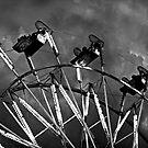 Ferris Wheel on a Stormy Night by Buckwhite