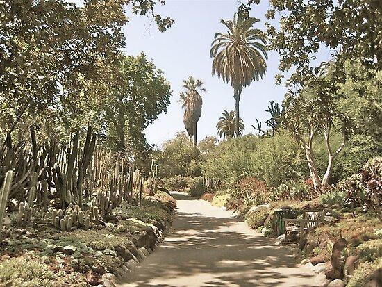 Untitled, California by Tara Burkhardt