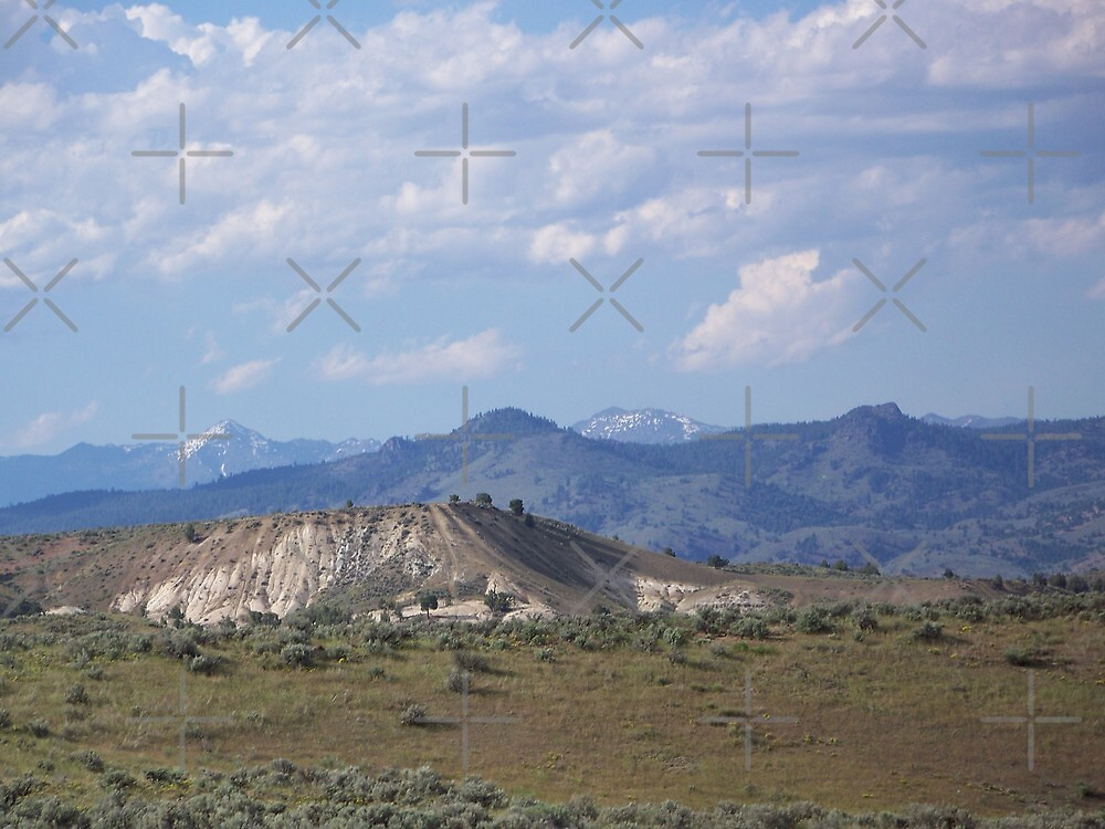 Denny Flat View of the Elkhorns - Eastern Oregon  by Betty  Town Duncan