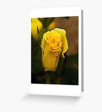 A Single Yellow Rose Bud Greeting Card