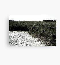 Dry Earth Canvas Print