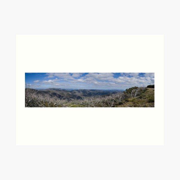 Fields of View Art Print