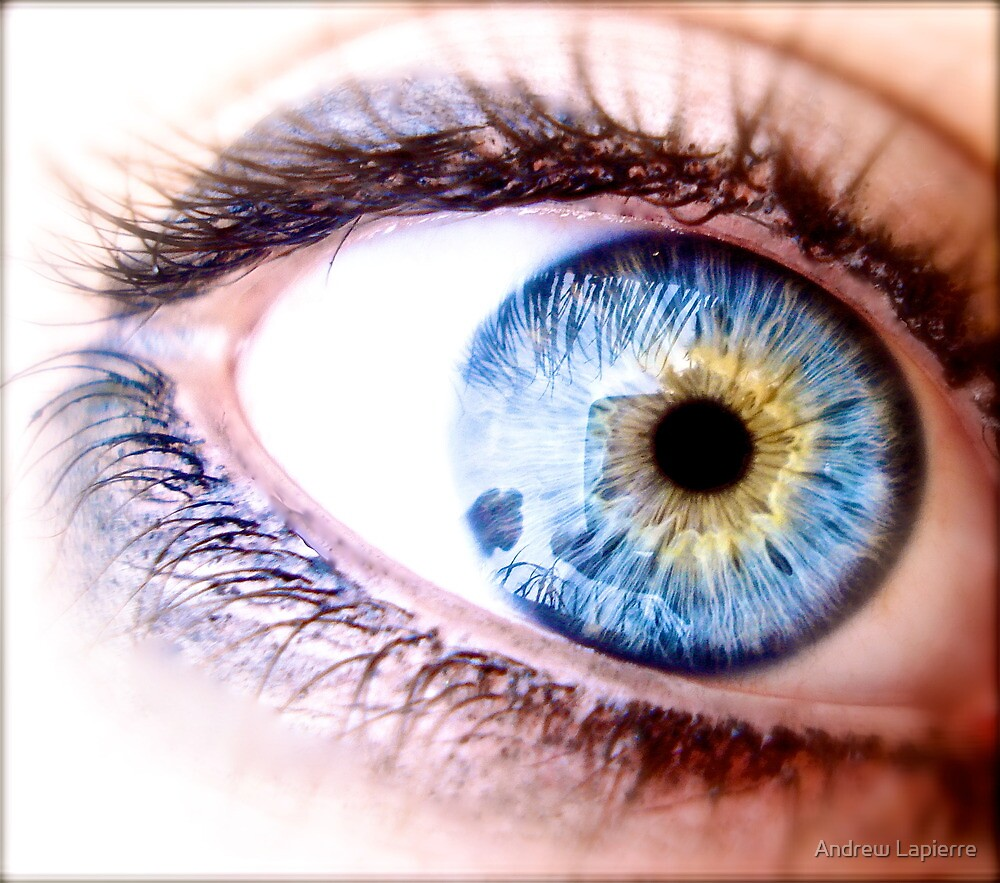 Quot Blue And Yellow Eye Quot By Andrew Lapierre Redbubble