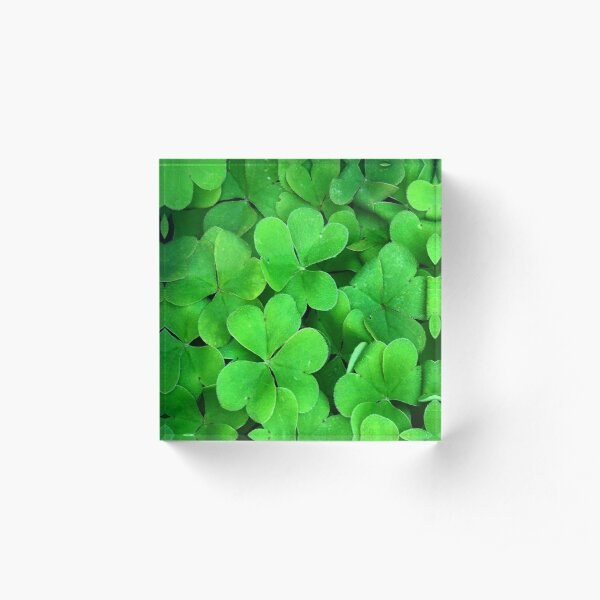 Lucky Four Leaf Clover Acrylic Block