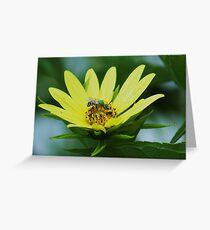 bee in yellow Greeting Card
