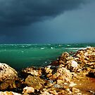 Storm Arriving by Eve Parry