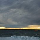 fishing boat coming home. bicheno, tasmania by tim buckley   bodhiimages