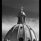 Copper Dome -Rathmines by Ferdinand Lucino