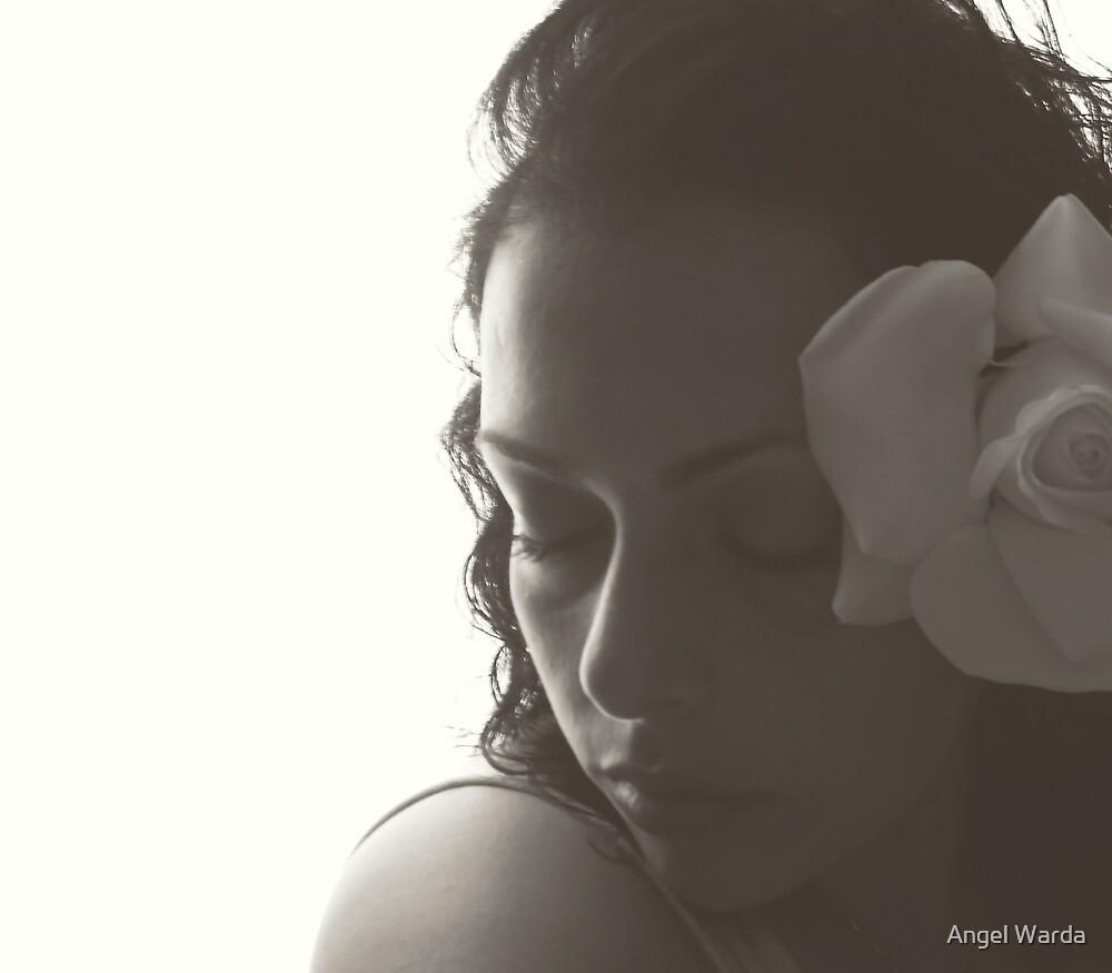 a rose. by Angel Warda